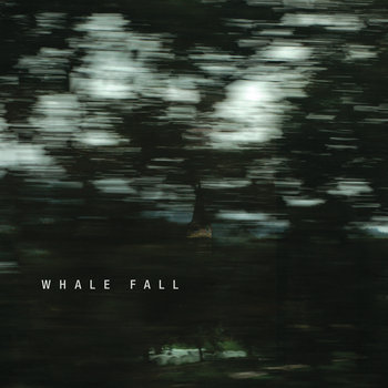 Whale Fall cover art