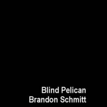 Blind Pelican/Brandon Schmitt Split  Cassette cover art