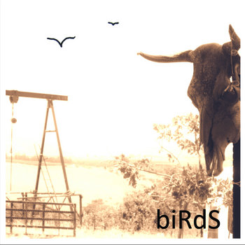 biRdS cover art