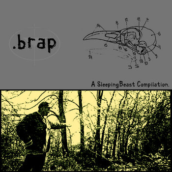 .brap cover art