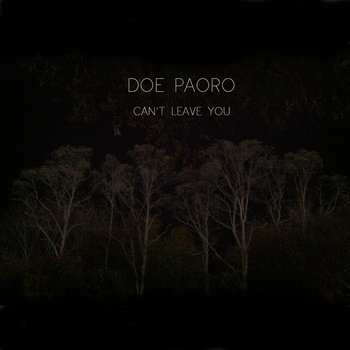 Can't Leave You cover art