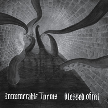 from split with Innumerable Forms cover art