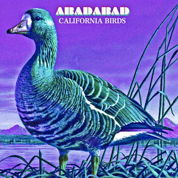 California Birds cover art