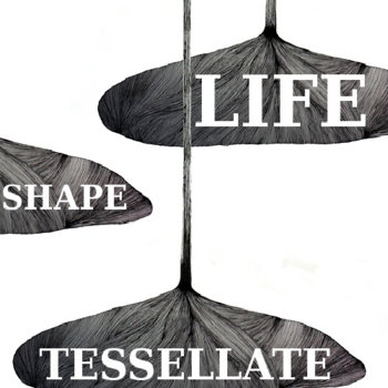 LIFE:SHAPE:TESSELLATE cover art
