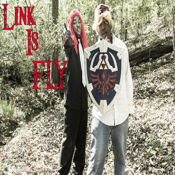 Link is Fly feat. INDO Washington cover art