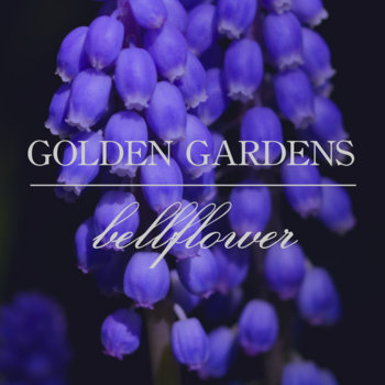 Bellflower cover art