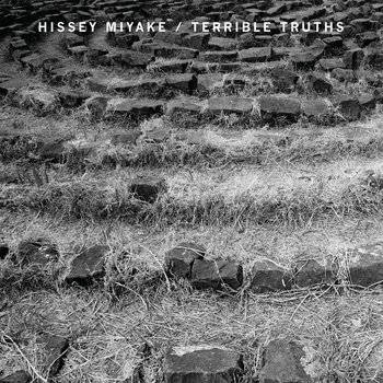 Hissey Miyake / Terrible Truths cover art