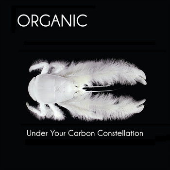Under Your Carbon Constellation cover art