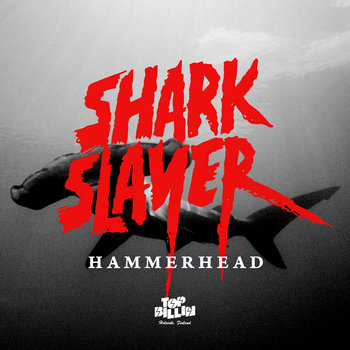 Hammerhead cover art