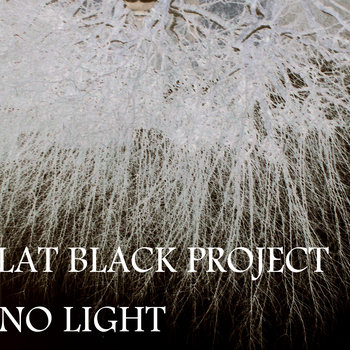 Flat Black Project - No Light cover art