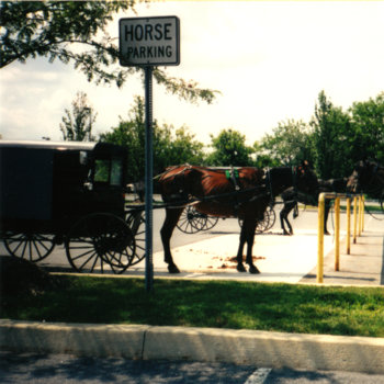 Horse Parking cover art