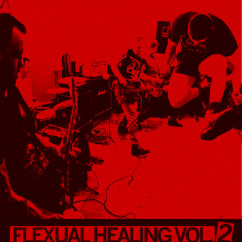 FLEXUAL HEALING VOL. 2: IN THE DOGHOUSE - LIVE AT MONGREL FEST cover art