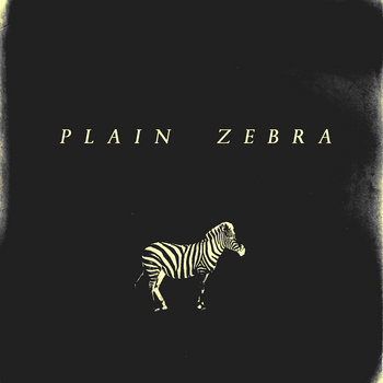 Plain Zebra cover art