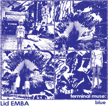 Terminal Muse:  Blue cover art