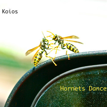 Hornets Dance cover art