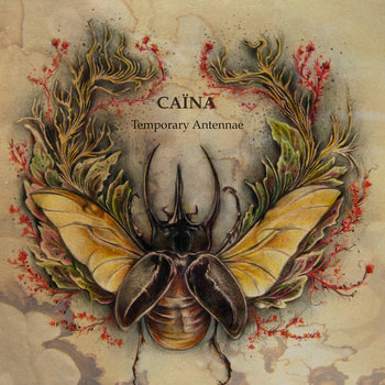 Temporary Antennae cover art