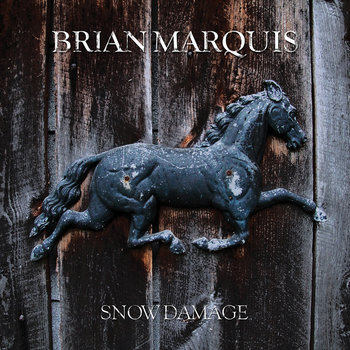 Snow Damage cover art