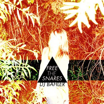 Free the Snares cover art