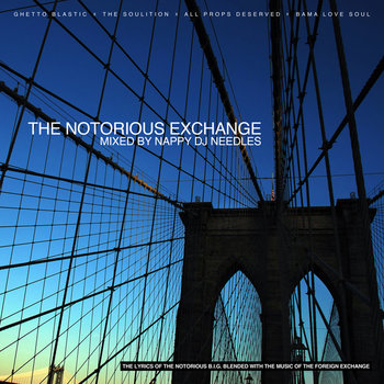 The Notorious Exchange cover art