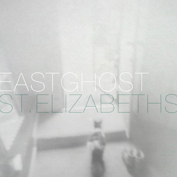 St. Elizabeths cover art
