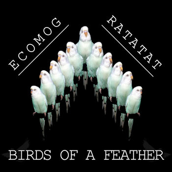 Birds of a Feather cover art