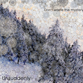 Don&#39;t waste the mystery cover art