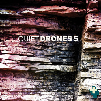 Quiet Drones 5 cover art