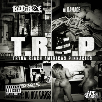 T.R.A.P.: Tryna Reach America's Pinnacles cover art