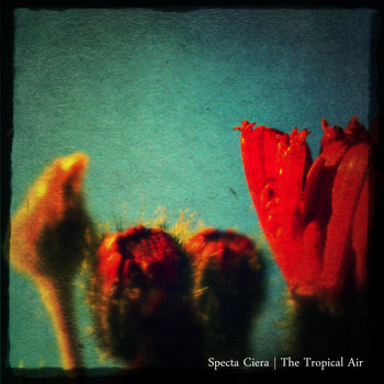 The Tropical Air cover art