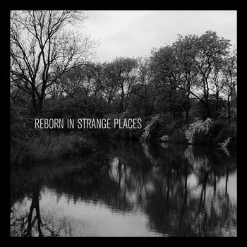Reborn In Strange Places cover art