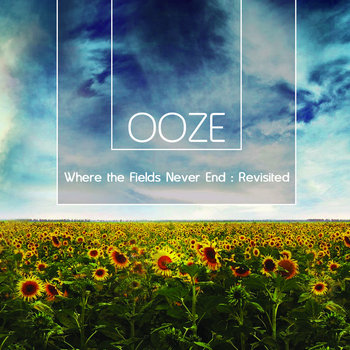 Where the Fields Never End : Revisited cover art