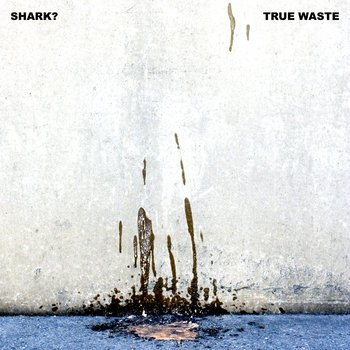 True Waste cover art