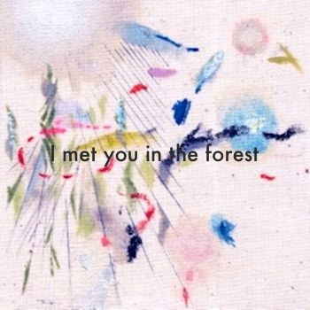I met you in the forest cover art