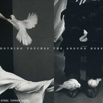 Nothing Touches the Ground Here cover art