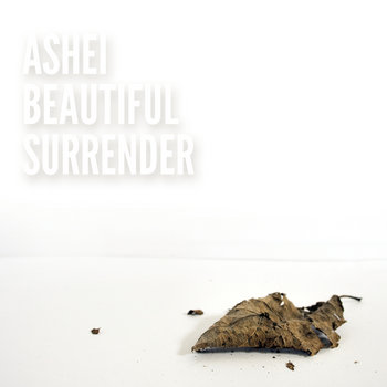Beautiful Surrender cover art