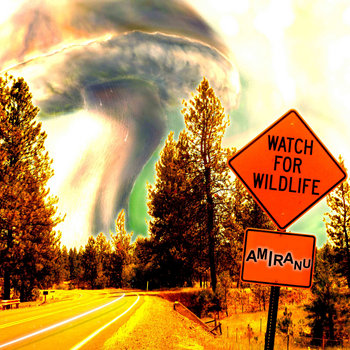 Watch For Wildlife cover art