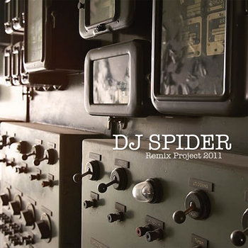 """Remix Project 2011"" - DJ Spider cover art"