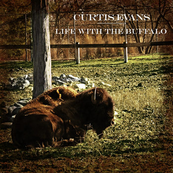 Life with the Buffalo cover art