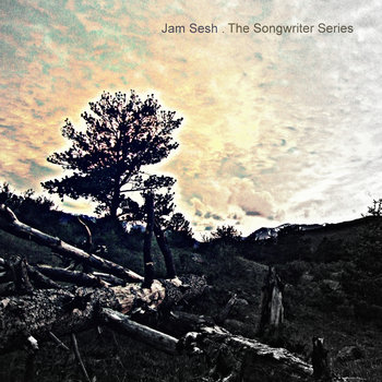 The Songwriter Series cover art