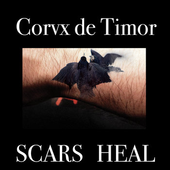 Scars Heal cover art