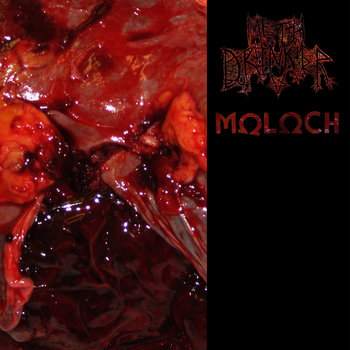"split 12"" with Moloch cover art"