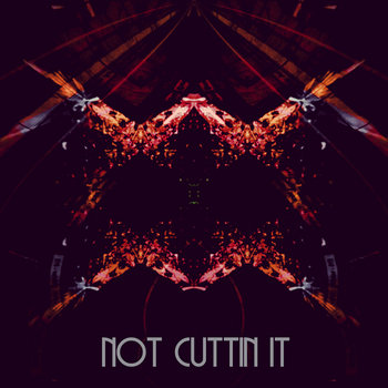 NOT CUTTIN IT cover art