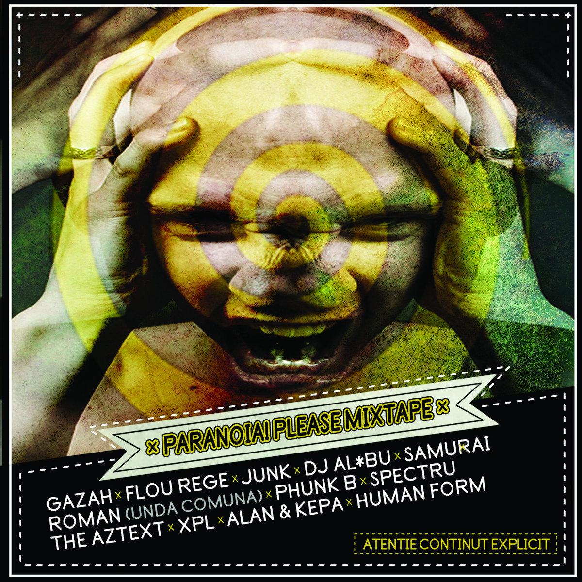 Paranoia Please Mixtape (2013)