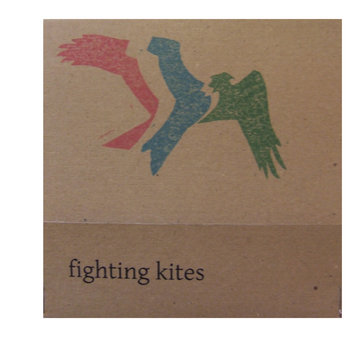 Fighting Kites cover art