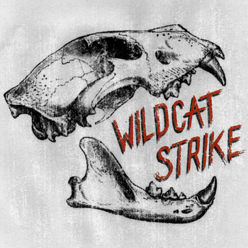 Wildcat Strike cover art