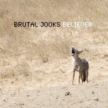 Believer cover art