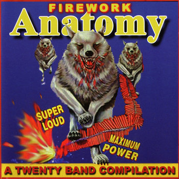 Firework Anatomy: A Twenty Band Compilation cover art