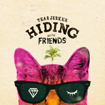 Hiding With Friends cover art