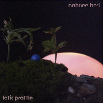 Lotic Prattle cover art