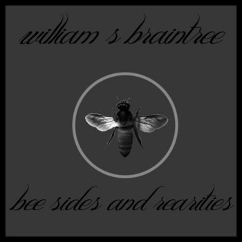 Bee Sides and Rearities 2005-2012 cover art